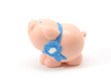 Prized toy pig. Plastic toy pig with a first place ribbon around its neck on a white background Royalty Free Stock Images