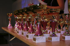 Prizes on reward ceremony. Bunch of prizes are waiting for competition winners Royalty Free Stock Images