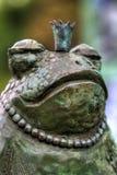 Príncipe de la rana Imágenes de archivo libres de regalías