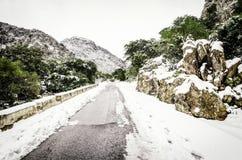 Prości śnieżni opona ślada - portret Obraz Stock
