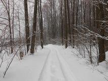 Prości śnieżni opona ślada - portret -5 fotografia stock