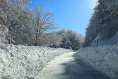 Prości śnieżni opona ślada - portret Zdjęcia Royalty Free