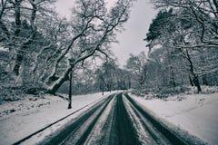 Prości śnieżni opona ślada - portret Obraz Royalty Free