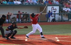 Pro action de jeu de baseball Images libres de droits