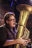 Pro Ake Holmlander während des Konzerts Lizenzfreie Stockfotos