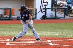 Pro baseball hitter Royalty Free Stock Image
