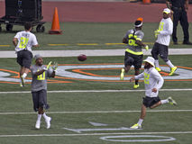 Pro Bowl Ball Lizenzfreies Stockbild