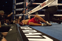 Pro Boxing in Phoenix, Arizona. Young male pro boxers fight in Iron Boy XIV in Phoenix, Arizona, USA, at the Celebrity Theatre, July 26, 2014. Here, a young Stock Images