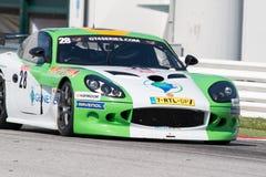 PRO CARRO DE CORRIDAS GT4 de Ginetta G50 Fotografia de Stock