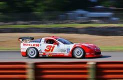 Pro Corvette racing Stock Image