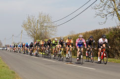 Pro cycling road racers Stock Image