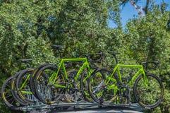 Pro-cykla Team Bikes Royaltyfri Foto