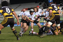 Pro D2 rugby match RCNM vs SC Albi Royalty Free Stock Photos