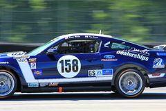 Pro driver Roger Miller Royalty Free Stock Image