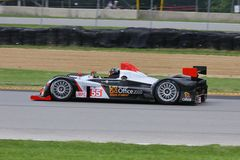 Pro driver Scott Tucker Royalty Free Stock Image