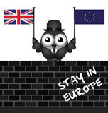 Pro European Union Royalty Free Stock Photo