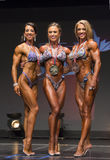 Pro Figure International Medalist Threesome. Three shapely international beauties stand with the top 3 medals of the Figure Division competition of the 2016 IFBB Stock Image