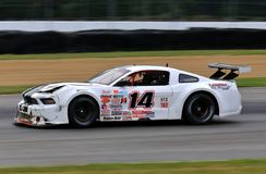 Pro Ford Mustang race car on the course Stock Photography