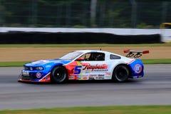 Pro-Ford Mustang racerbil på kursen Arkivbild