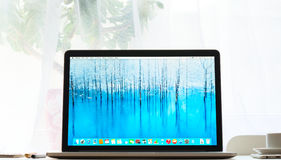 Pro-foto av Macbook Arkivfoto