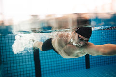 Pro male swimmer in action inside swimming pool. Underwater shot of pro male swimmer in action inside swimming pool. Young sportsman training in the pool royalty free stock images
