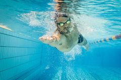 Pro male swimmer in the swimming lane. Male swimmer in the swimming pool.Underwater photo with copy space Stock Photo