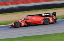 Pro-Mazda DPi Racing royaltyfri bild
