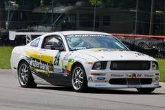 Pro Mustang racing Royalty Free Stock Photo