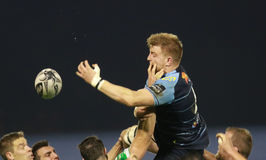 Pro-12 Rugby Guinnes - Benetton gegen Cardiff Lizenzfreies Stockfoto
