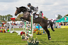 Pro show jumper Royalty Free Stock Image