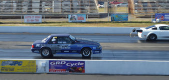 Pro Stock Drag Racing Royalty Free Stock Photography
