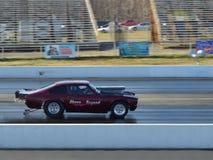 Pro Stock Drag Racing Stock Photography
