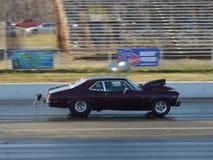 Pro Stock Drag Racing Royalty Free Stock Photo
