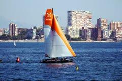 ProAM 32 catamarani che si preparano nella baia di Alicante Immagine Stock