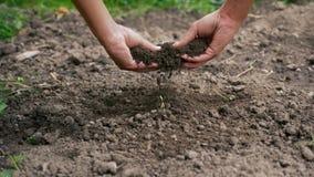 Probando el suelo con las manos cerca para arriba