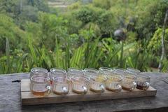 Probar el sistema de diversas clases de té y de café en outdoo de las tazas Fotos de archivo