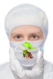 Probe der Anlage in einem Reagenzglas und das Gesicht eines Biologen Lizenzfreie Stockbilder