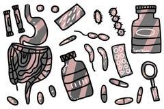 Probiotic иллюстрация концепции вектора Флора кишки иллюстрация вектора