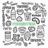Probiotics bacteria food medicine set gut bacterial flora. Probiotics bacteria, food and medicine set. Gut bacterial flora. Fermentation products. Vector icon vector illustration