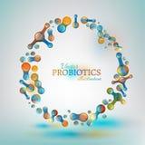 Probiotics and prebiotics. Normal gram-positive anaerobic microflora image. Editable vector illustration in bright colors in unique style. Medical, healthcare stock photography