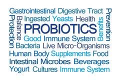 Probiotics Word Cloud royalty free stock image