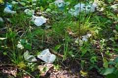 Garbage and plastic in the forest stock photo