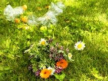 Problem z zanieczyszczeniem Piękny bukiet dzicy kwiaty na tle śmieci Banialuki na gazonie obrazy royalty free