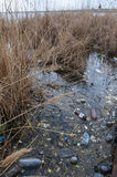 Problema ambiental, lixo Contaminação com restos e pl Imagens de Stock Royalty Free