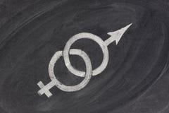 Problemas do género, do relacionamento ou da união Fotos de Stock Royalty Free