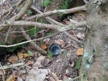 Problemas y contaminación ecológicos de la naturaleza por los desperdicios Foto de archivo