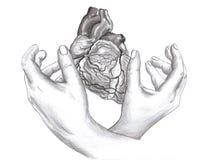 Problemi del cuore Fotografie Stock Libere da Diritti