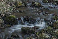 Probostovsky creek near Bynov village in spring evening. Probostovsky creek near Bynov village in spring dark sunny evening royalty free stock images