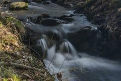 Probostovsky creek near Bynov village in spring evening. Probostovsky creek near Bynov village in spring dark sunny evening stock photo
