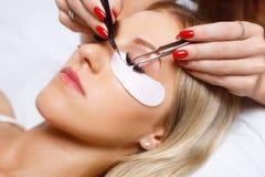 Procédure d'extension de cil Oeil de femme avec de longs cils Mèches, fin, foyer sélectionné Photo stock